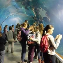 tunel podwodny 4
