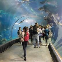 tunel podwodny 3