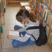 biblioteki (1)